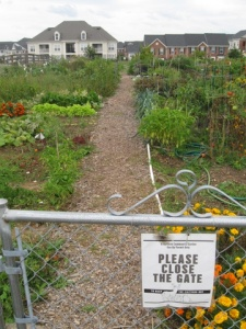 King Farm Community Garden.