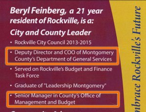 Beryl Feinberg's 2015 campaign literature lists two job titles.